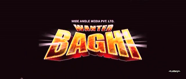 Wanted Baghi 2014 Hindi Dubbed DthRip 700mb