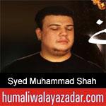 https://www.humaliwalayazadar.com/2020/01/syed-muhammad-shah-ayyam-e-fatima-noha.html