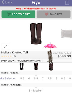 zappos add boots kitten