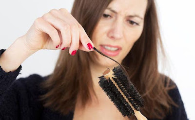 Top-Foods-That-Prevent-Hair-Loss