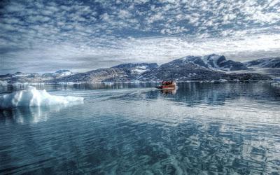 Balıklar Neden Donmaz, Soğuk Denizlerdeki Hayvanlar Neden Donmaz