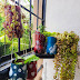 DIY Hanging Planters made out of Plastic Bottles with Step by Step Instructions