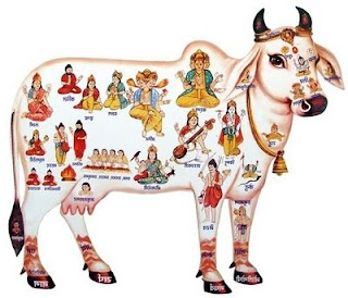 gau mata showing all gods on her body