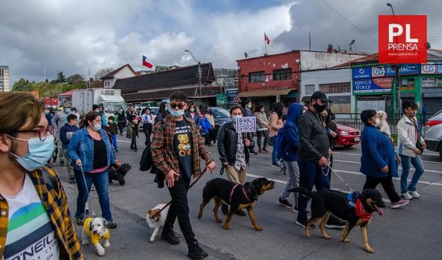 Marcha por los derechos de los animales