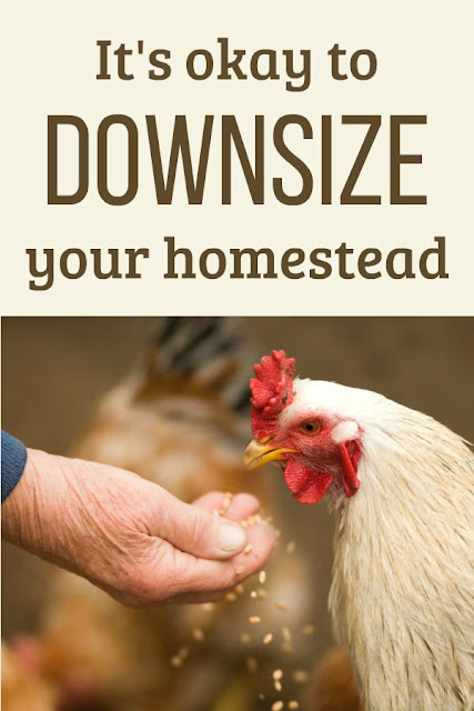 It's okay to downsize your homestead. Whatever your situation or circumstances, I hope these suggestions for downsizing will help you in your situation.