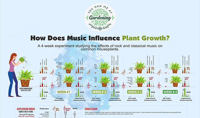 Plant Experiment: Classical & Rock Music for Plants Growth #infographic
