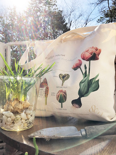 Even if you placed this tulip canvas tote bag Large casually, it looks like one page of an interior magazine or a gardening magazine. It seems that the tulips have already bloomed and it's not boring even in the fall and winter.