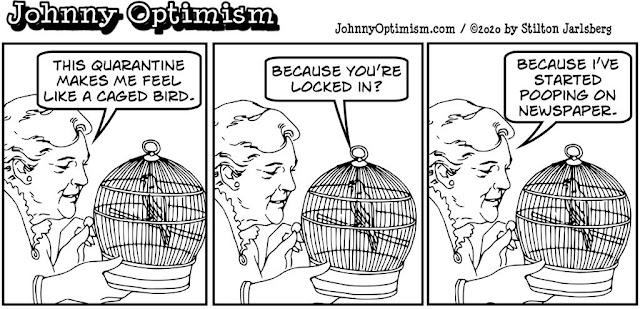 johnny optimism, medical, humor, sick, jokes, boy, wheelchair, doctors, hospital, stilton jarlsberg, love bird, coronavirus, quarantine, poop