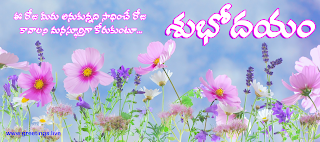 good morning have a beautiful day in Telugu.