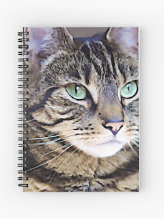 tabby cat art notebook