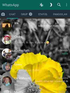 Aplikasi Tema Whatsapp