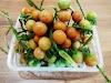 Cherry Tomatoes in my Kitchen Garden