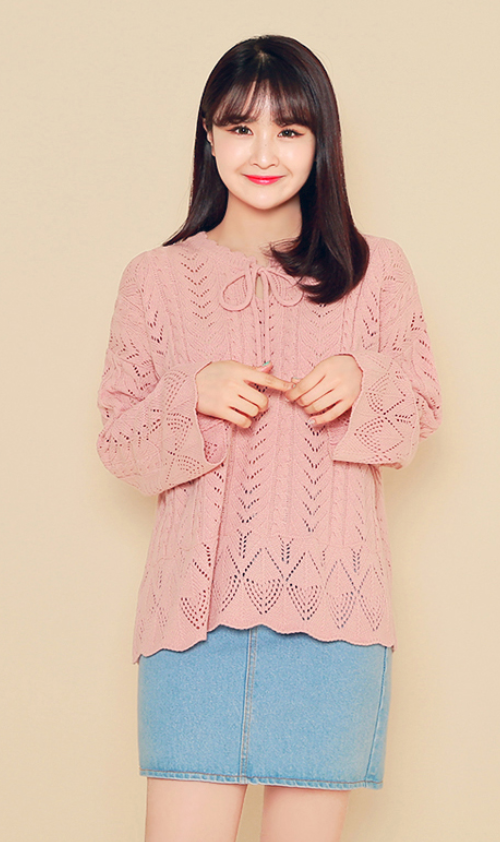 Lace Knit Tie Neck Blouse