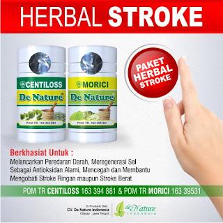 Obat herbal menyembuhkan stroke, Obat herbal stroke, Obat herbal untuk stroke
