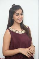 Nikki Galrani in a Brown Shining Sleeveless Gown at Nakshatram music launch ~  Exclusive 060.JPG