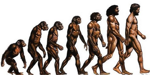 Tujuan  Antropologi adalah