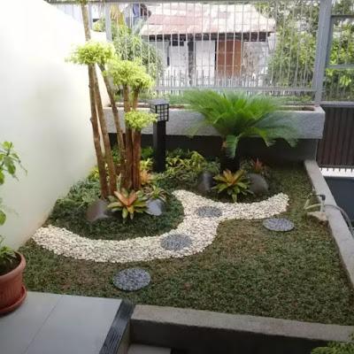 Tukang Taman Jambu dua Bogor - SuryaTaman