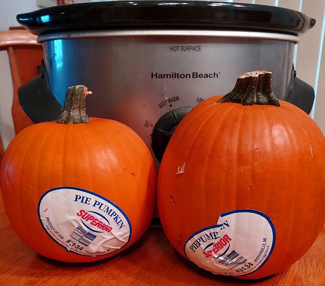 this is a slow cooker photo with two sugar pie pumpkins to make a slow cooker pumpkin spiced latte coffee drink