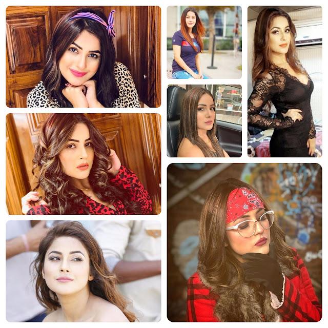 Shehnaaz Gill Hairstyles