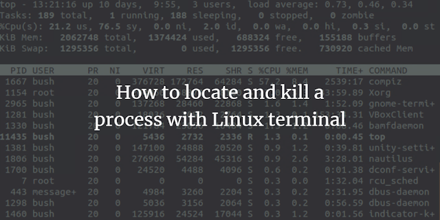 how to stop an uncontrolled process in ubuntu