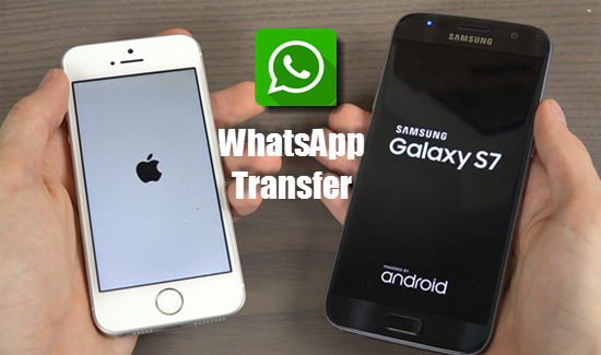 android whatsapp backup restore and recover how to transfer
