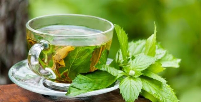 Green Tea For Weight Loss And Some Other Great Weight Loss Secrets