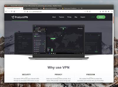 Tampilan Website ProtonVPN