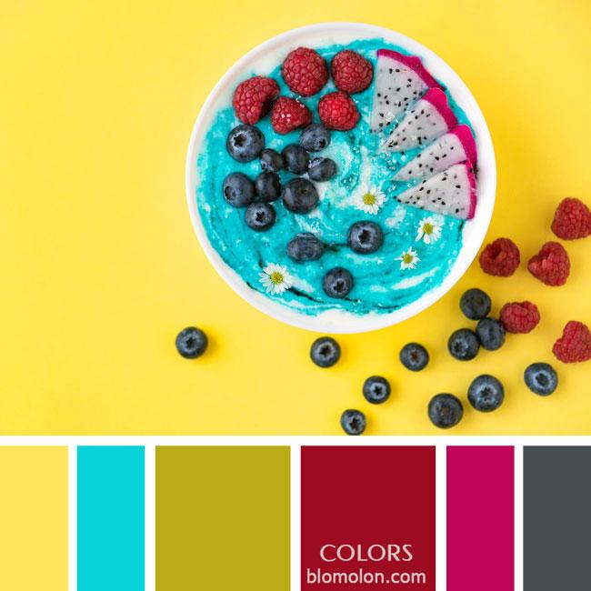 variedad_en_color_paletas_de_colores_66
