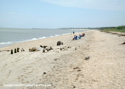 Higbee Beach in Cape May New Jersey