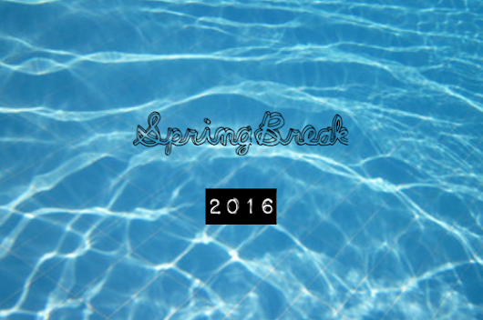 Spring Break Swimsuit Picks 2016