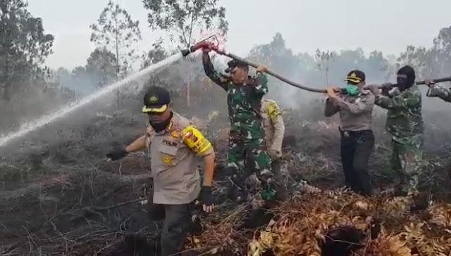 Petinggi TNI - Polri Kota Pekanbaru Berjibaku Padamkan Lahan Terbakar