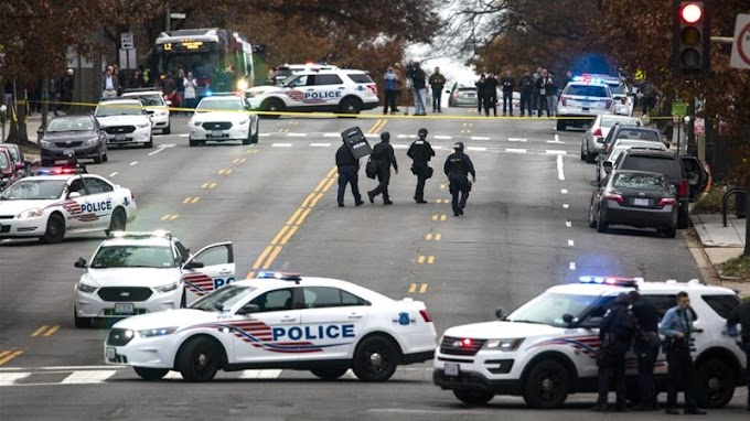 Pizzagate: Man opens fire in Washington restaurant