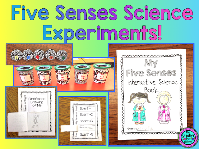 Books About Our 5 Senses