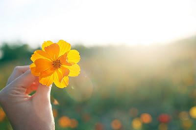 Resultado de imagem para imagens de felicidade e perdão