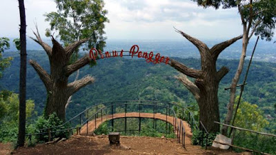 Pinus Pengger, Objek Wisata Alam yang Unik di Yogyakarta
