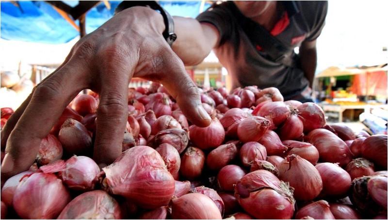 Ilustrasi pembeli memilih bawang merah di pasar