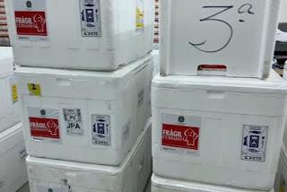 Quase quatro milhões de doses contra Covid-19 já foram distribuídas para os municípios da Paraíba