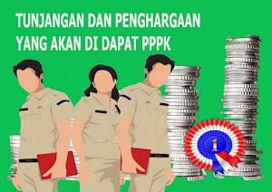Gaji PPPK dan Penghargaan yang didapat PPPK ASN non PNS