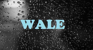 What does WALE Mean? - Meaning of WALE