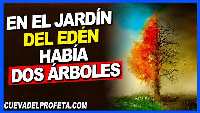 En el Jardín del Edén había dos árboles - William Marrion Branham en Español