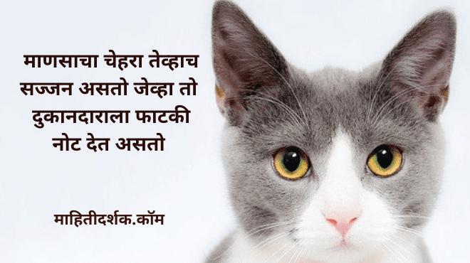 Marathi Jokes Images