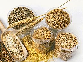 Время переваривания зерновых