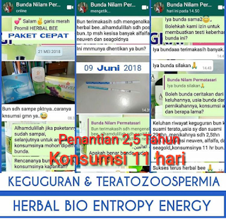 Jual Herbal Bee di Kota Pontianak