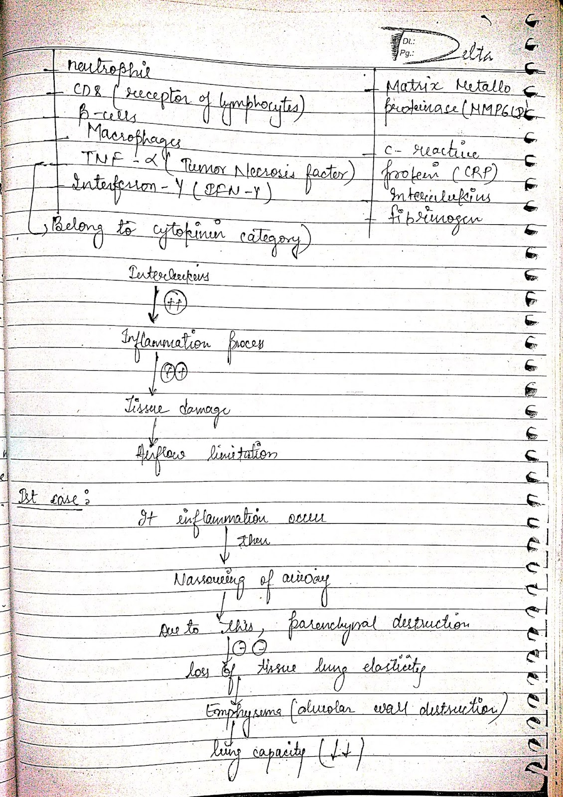 pathophysiology - chronic orstructive pulmonary diseases, copd, coad, cord, cold