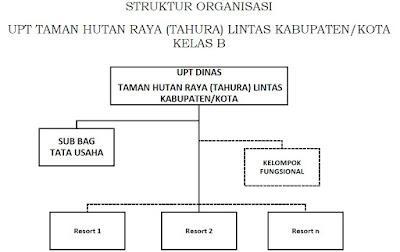 Struktur Organisasi UPTD TAHURA KELAS B