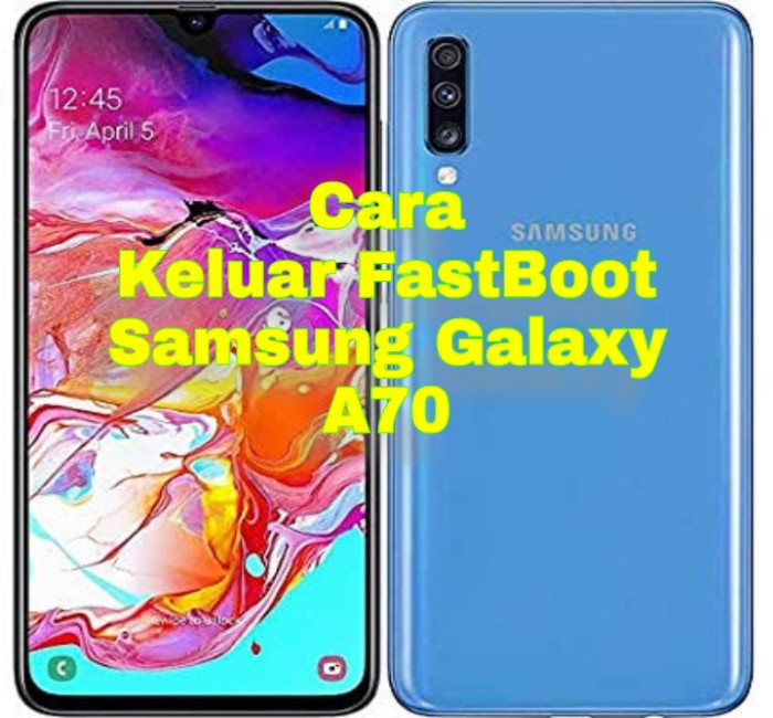 Samsung A70 Mengalami FastBoot Mode