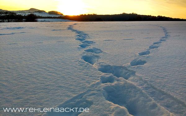 Winterwonderland Rhoen | Foodblog rehlein backt