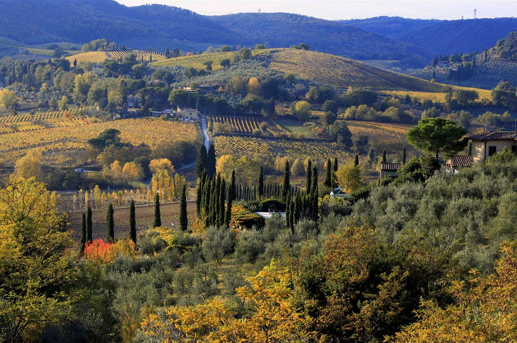diego fornero - San Gimignano