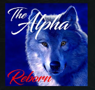 Steps Guide Install The Alpha Reborn Addon On Kodi