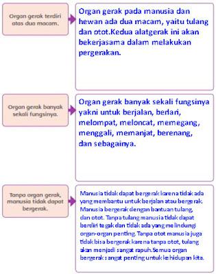 kunci jawaban tema 1 kelas 5 organ gerak hewan dan manusia